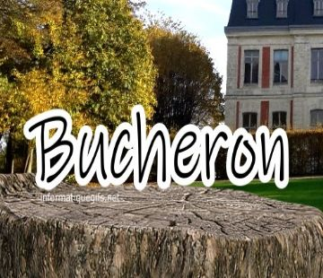 photo bucheron bois